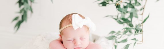 Natural Light Studio | Tampa Newborn Session